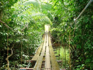 Foot_bridge_Bahia_Drake