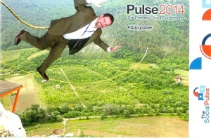 Allan  bungee jumps at Pulse 2014